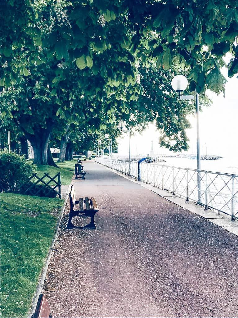 Park Benches Along Lake Geneva Evian les Bains