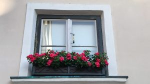 Window box of geraniums in France Europe Travel