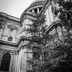 St. Paul's Cathedral BW
