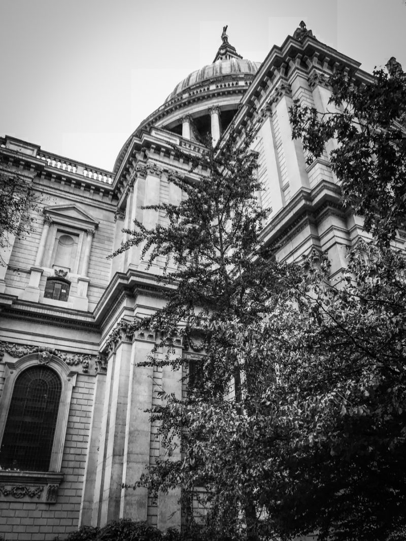 St Pauls Cathedral looking up