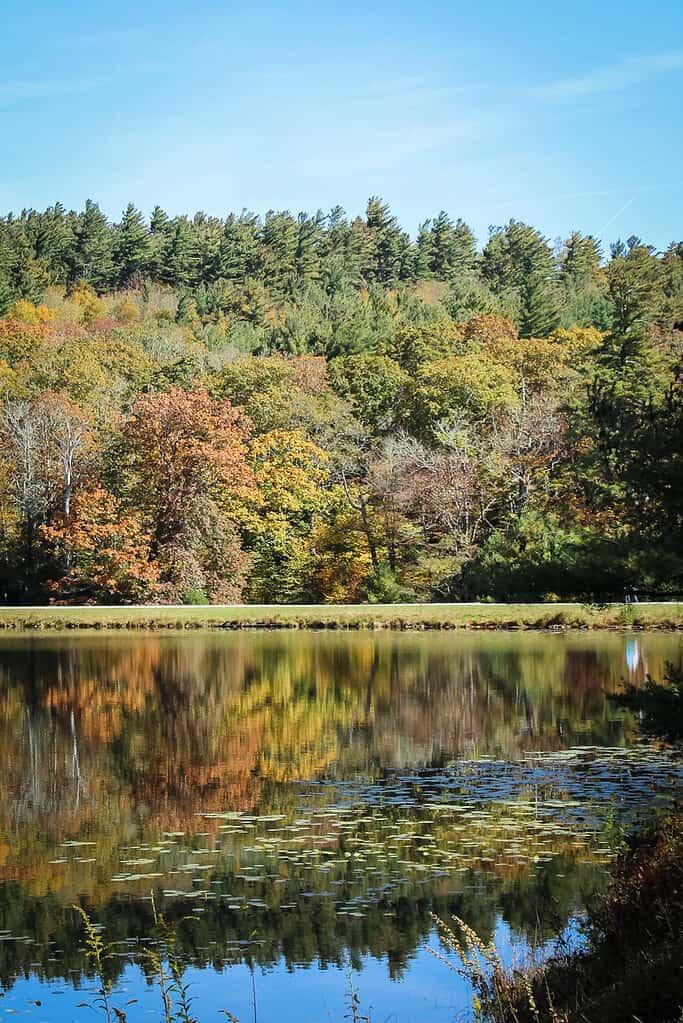 Bass Lake in North Carolina