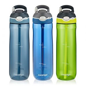 Contigo Water Bottle with Straw