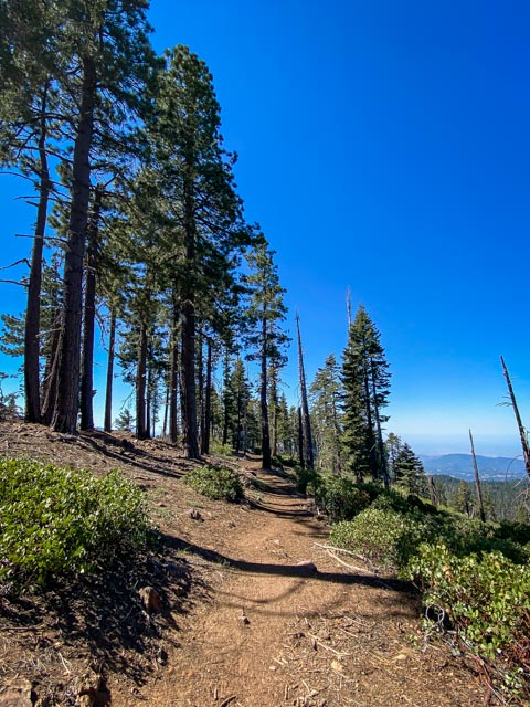 Kings Canyon path to fire lookout