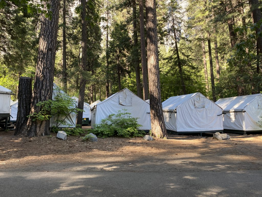 Tent camping in Yosemite National park