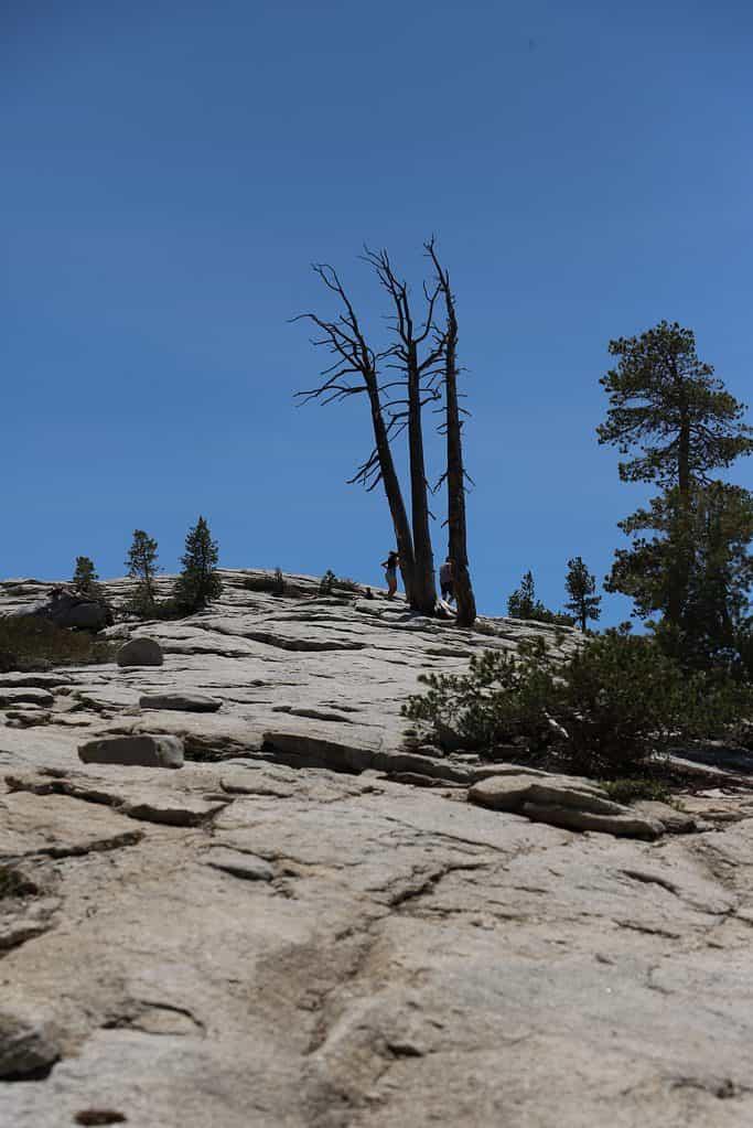 Sentinel Dome at Yosemite National park