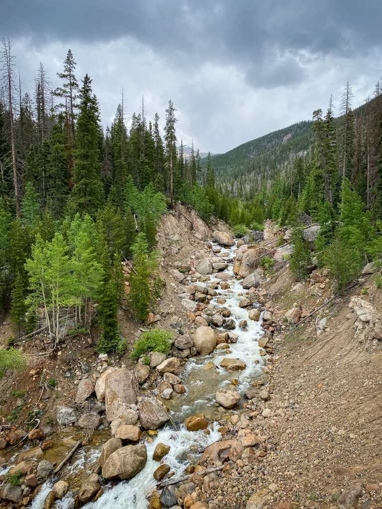 Roaring River in Rocky Mountain National Park
