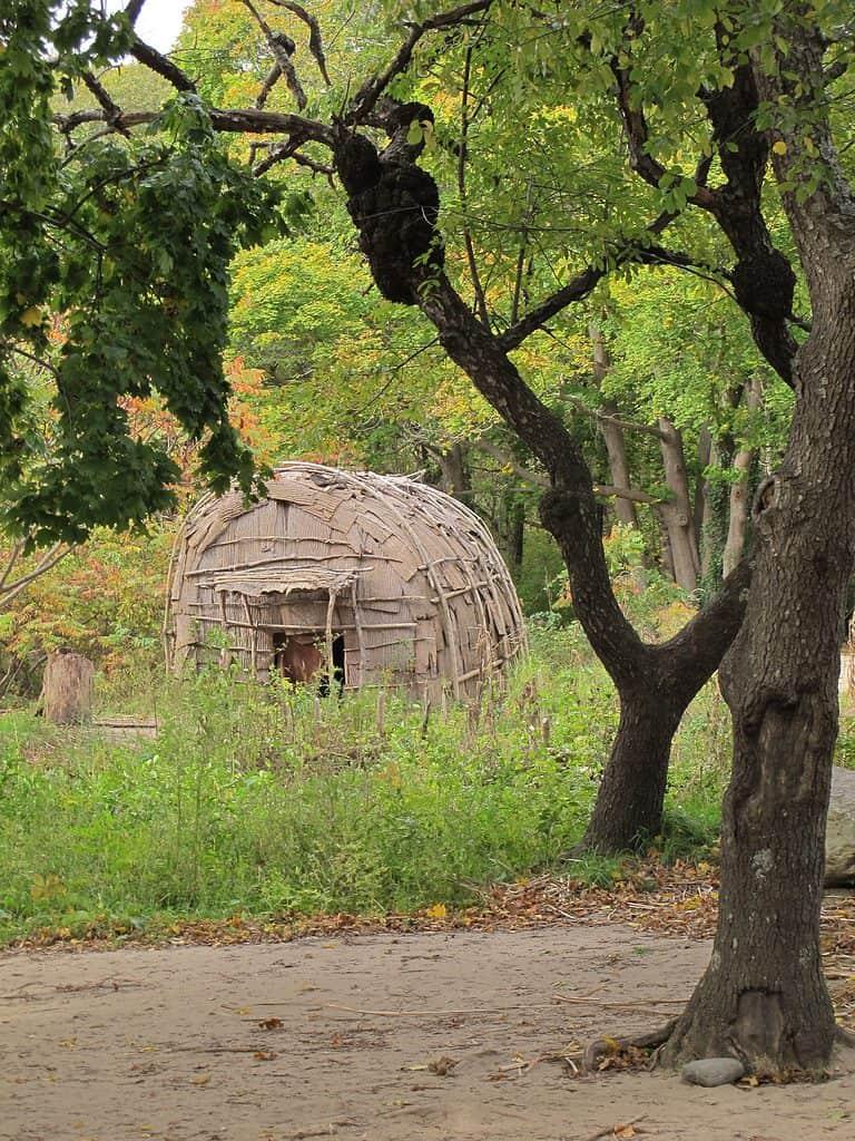 Huts at the Plimoth Plantation