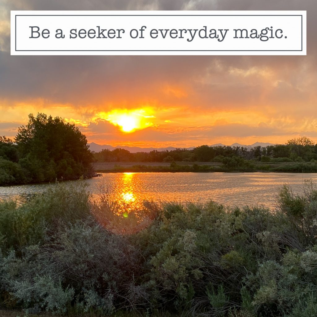 Instagram content quote be a seeker of everyday magic