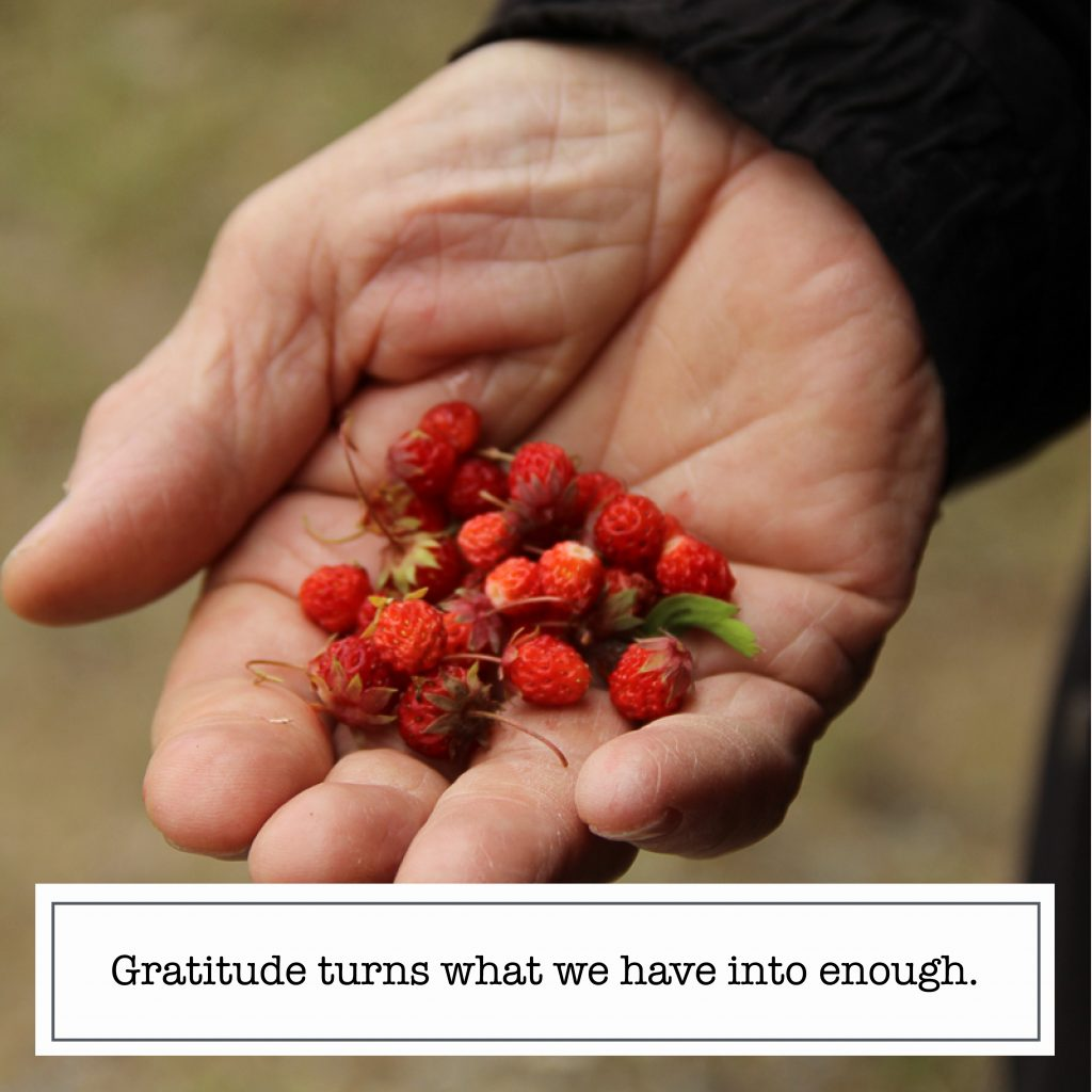 Instagram content quote gratitude turns what we have into enough