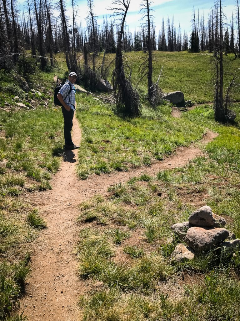 fork in the trail to Alberta Peak for hikes in Colorado