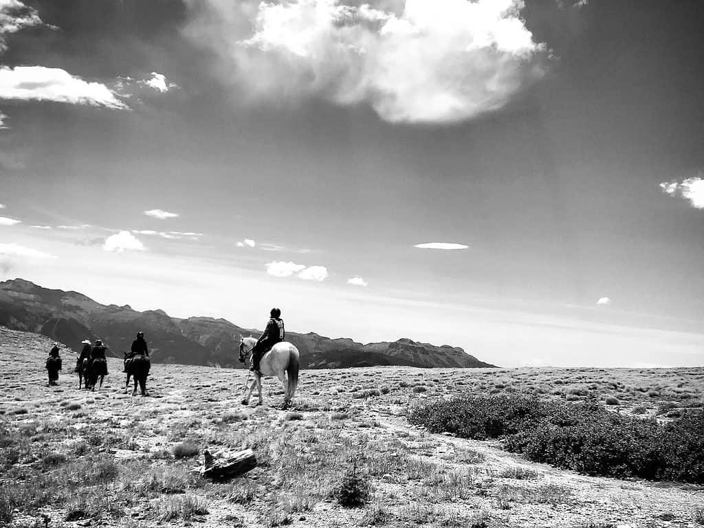 Horse tours at Alberta Peak for hikes in Colorado