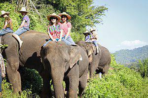 Adventure Seeking Women and riding elephants