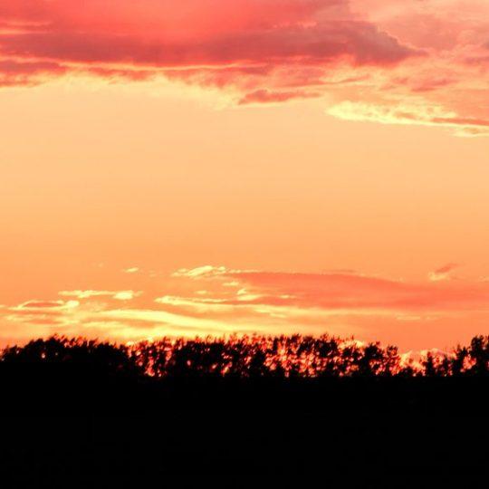 Southern Alberta sunset